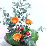 生け花モダンクラス